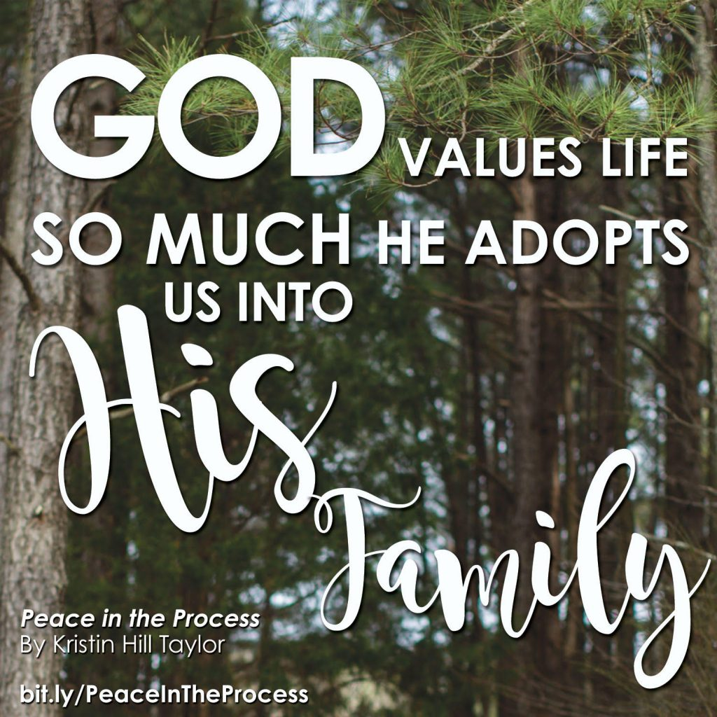 God values life so much He adopts us into His family. - Kristin Hill Taylor, Peace in the Process