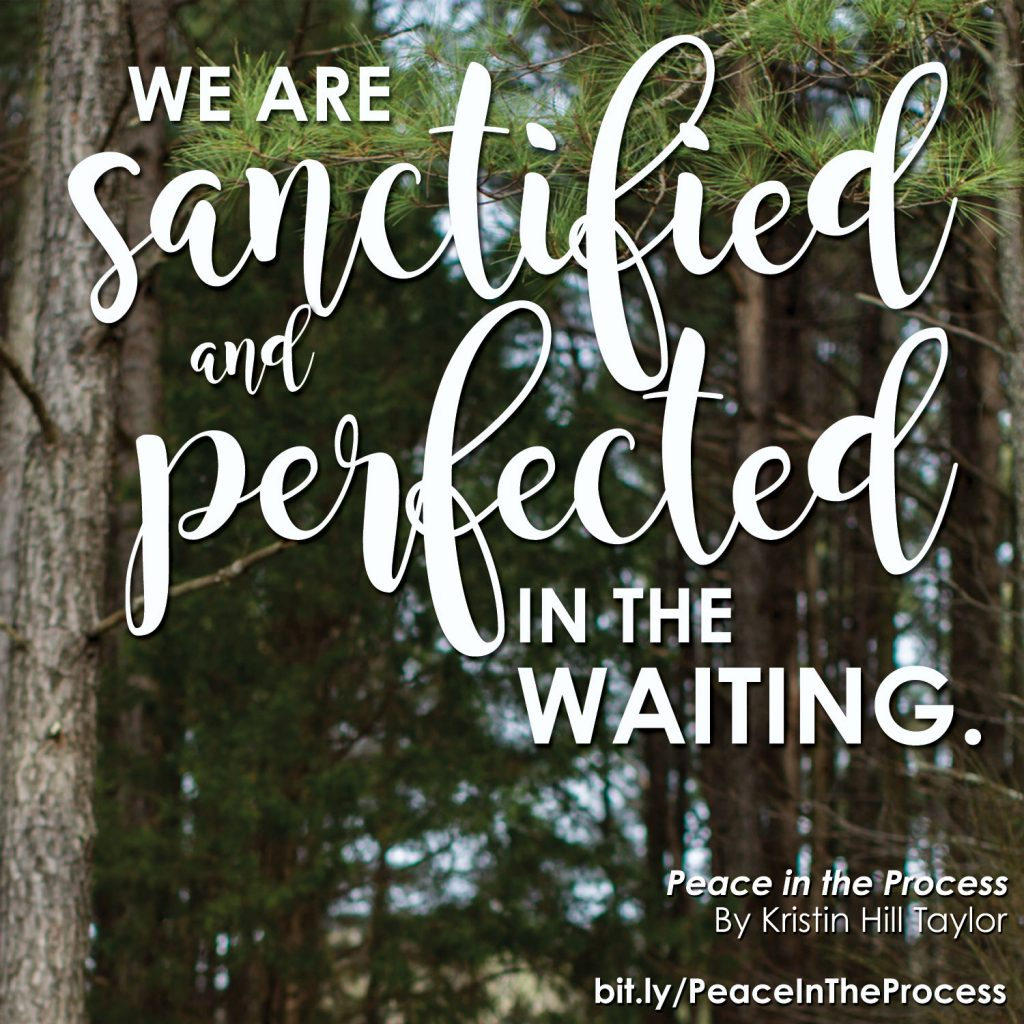 We are sanctified and perfected in the waiting. - Kristin Hill Taylor, Peace in the Process